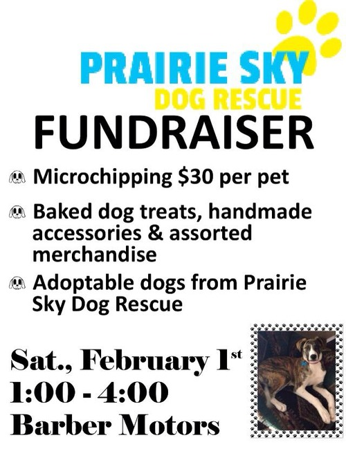 Adoption and Microchipping Event in Weyburn