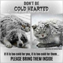 We are expecting extreme cold temperatures in Saskatchewan. Please make sure your pets have adequate shelter.