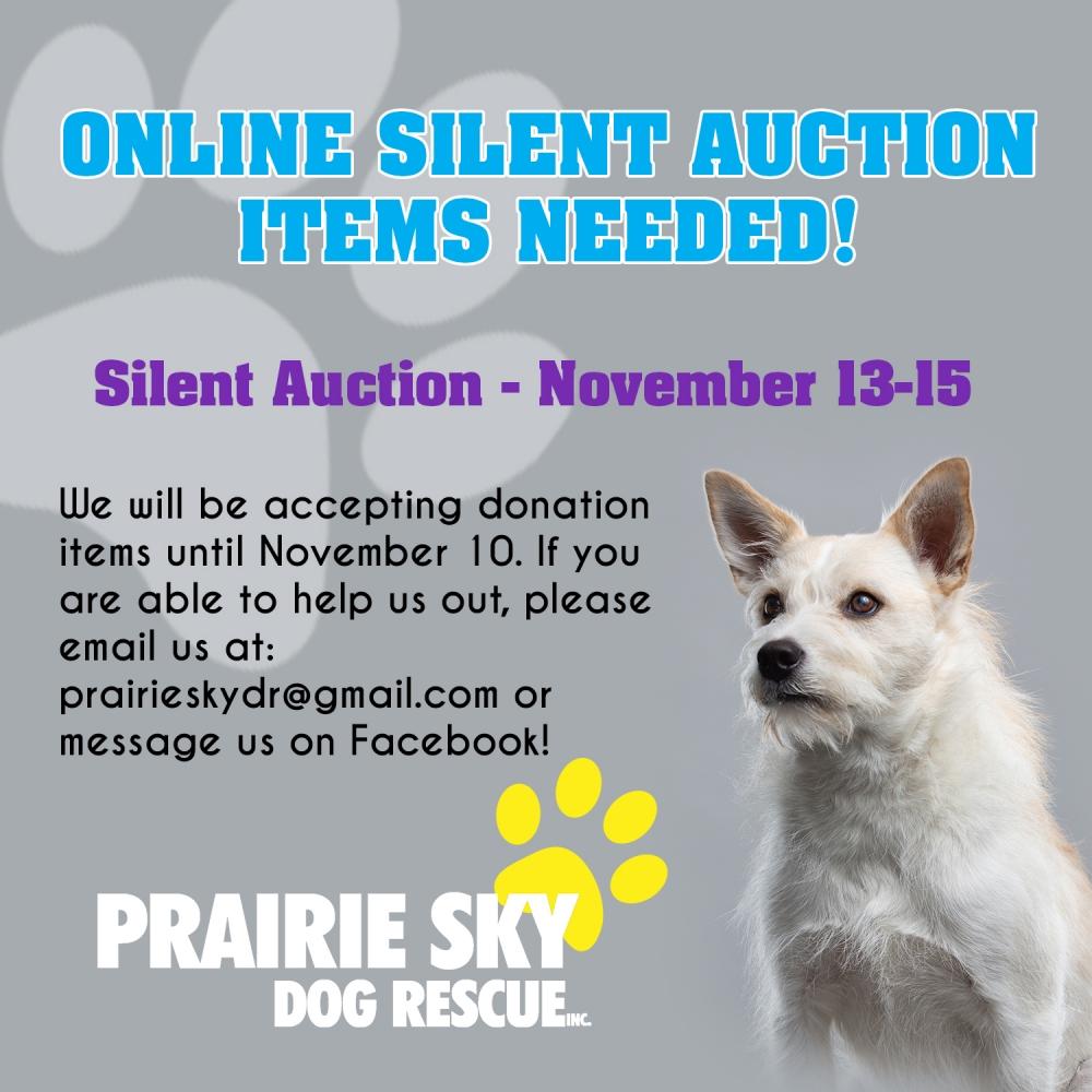 Online Silent Auction!